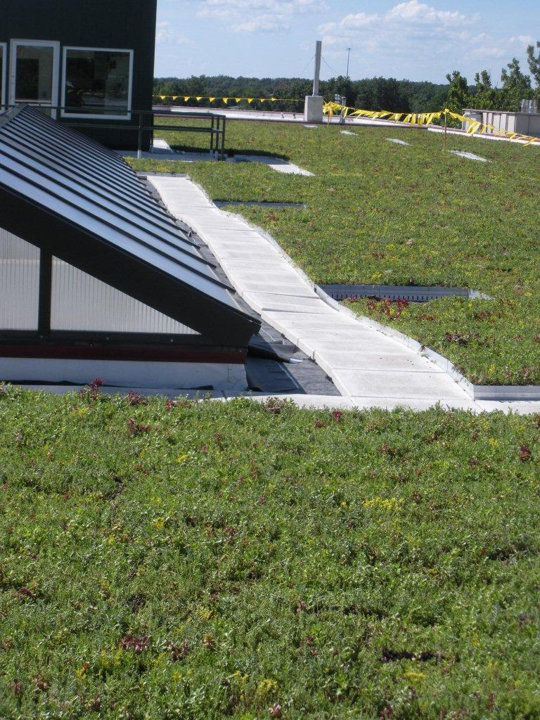 Illinois Department of Agriculture Living Roof by LiveRoof